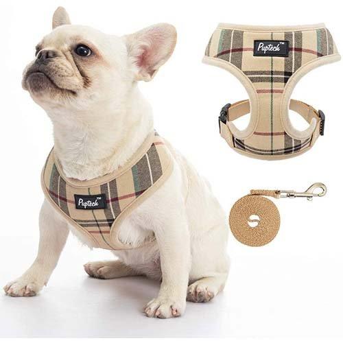 Plaid puppy harness