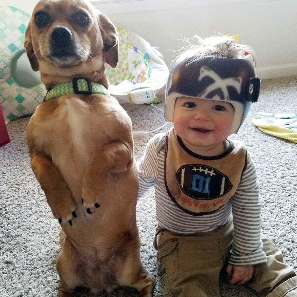 Baby with head shaping helmet sitting next to dog
