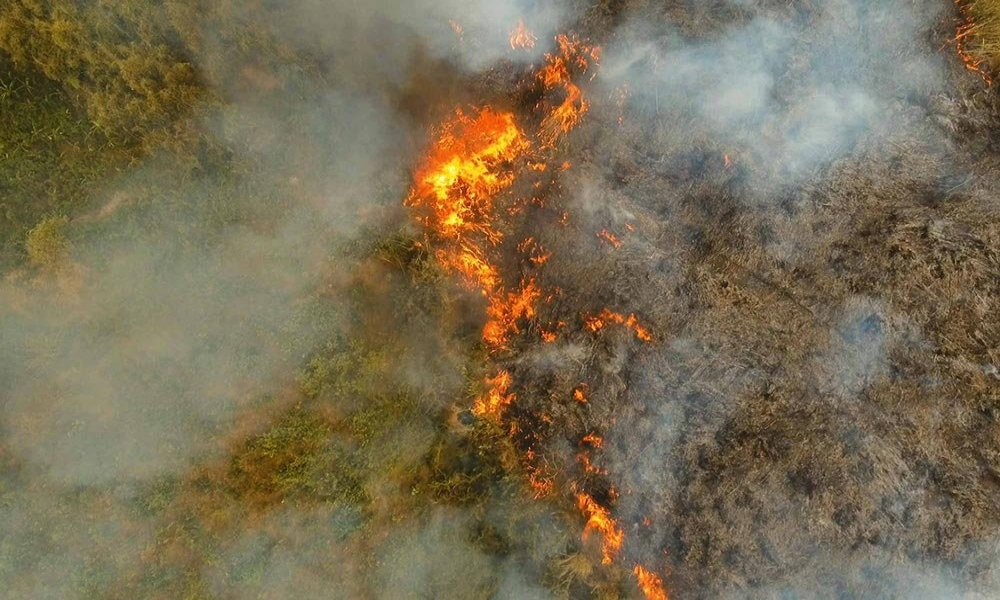 sky view of a forest fire