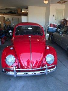 restored Volkswagen beetle front
