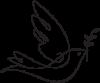 San Saba Dove